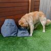 3-Piece Dog Travel Buddy Set, Collapsible Dog Bowl, Dog Food Storage Bag, And Poo Bag Dispenser, By Navigator